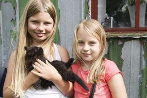 Ida och Tuva tycker att det är skönt att alla katter är hemma igen.