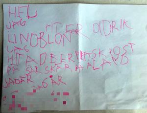 Didriks brev till Sanna och Elin Kronsell.
