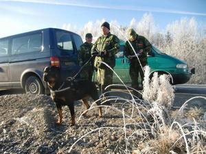 Sökhunden Dana med Niclas Thunborg från Medelpads hemvärnsgrupp letade i terrängen runt Bräcke, tillsammans med Michael Edlund och Leif Melsom.