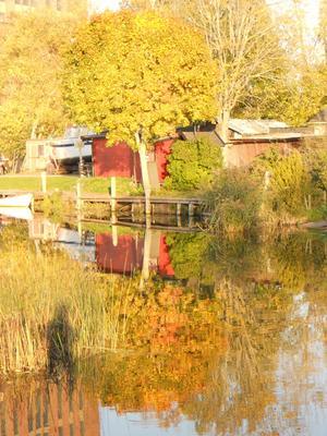 Höstens röda och gula färgnyanser på växtligheten och gamla sjöbodar bildar en helhet i vattenspegeln där även gamla kraftvärmeverkets tegelfasad avbildas