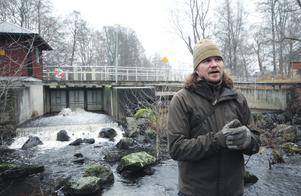 Johan Törnblom, biolog och projektledare på Skogsmästarskolan, visar en del av Hedströmmen där forskningsprojektet ägt rum. På hösten leker öringen för fullt i strömmen och lägger rom bland stenarna.