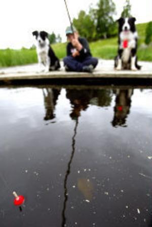 I Sveriges fem stora sjöar och längs kusterna är fiske med handredskap fritt.