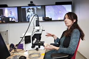 SMIDIGARE. Ny teknik för videokonferenser har revolutionerat Landstinget Gävleborgs arbete med diagnostik. Till exempel kan patologen Pia Waldenbäck sitta i ett konferensrum i Gävle och analysera provsvar från en patient i Hälsingland, med exakt bildåtergivning, och diskutera dem med den behandlande läkaren i Hudiksvall.