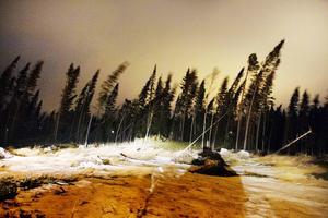 Länsstyrelsen ser en stor risk för att ett oväder kommer att orsaka ett långvarigt strömavbrott i länet.    Bilden är från stormen Ivar.