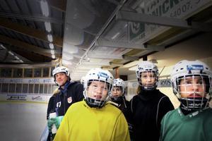 Blickar de mot SM-slutspel? Längst fram står spelarna Sofia Nilsson, Erica Thor och Sofia Ihrén. Thomas Lilo bakom till vänster.