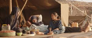 Medan islamister håller staden Timbuktu i ett järngrepp lever boskapsägaren Kidane och hans familj ett fritt liv på landsbygden. Men det ska snart förändras, i Oscarnominerade