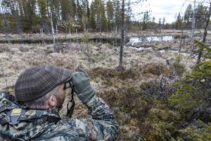 På spaning efter bävern. Anders Lifland Nørgaard bär kikaren runt halsen och tar ofta upp den.