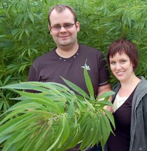 –En intressant växt och ett spännande försök, tycker Emanuel och Jenny och håller fram en nära tre meter lång ört. Foto:Kent Olsson