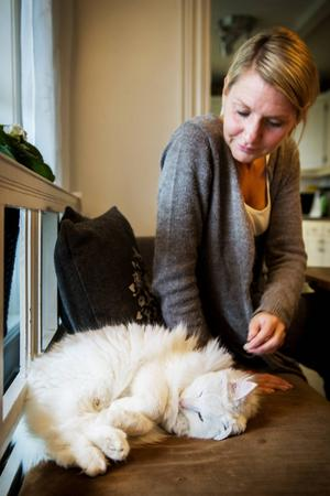 Katten Ludde trivs på kökssoffan tillsammans med Marléne.
