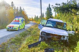 Bilföraren klarade sig utan skador efter att ha väjt ner i diket när en älg hoppade upp på vägen.