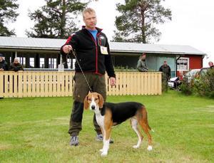 Hamiltonstövaren Roggabäckens Daisy med handler Leif Aronsson(ägare Ernst Bjureflo).                                                                                         Foto: Rolf Pellving