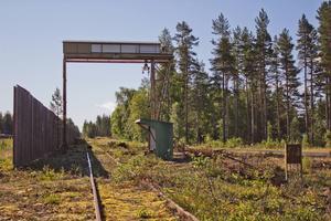 Timmerterminalen i Malungsfors kan gå mot en ljusnande framtid. Kommunen har under sommaren rensat bort den skog som tidigare växt upp i banområdet.