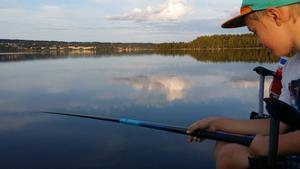 Kasper försöker fånga aborre i storsjön en varm sommarkväll i augusti. Fotograf: Pär Peterson