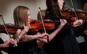 Att spela fiol kräver koncentration. Många spalade i olika stämmor också. FOTO: STAFFAN BJÖRKLUND