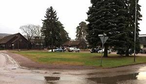 Onödig grönytan tycker Rättviksbo som vill dubblra parkeringen bakom bankhuset i Rättvik.