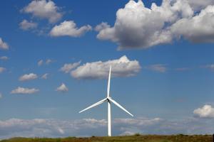 Vindkraften är lönsam för elkonsumenterna och gynnsam för klimatet, menar Charlotte Unger, vd för Svensk Vindenergi.
