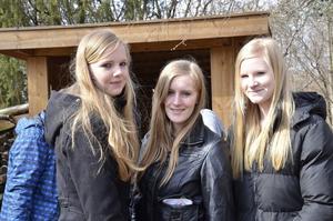 Talitha van Eiken, Kim Valkenburg och  Barbara Rijkenberg.