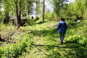 Här kommer vandrarna fram efter en mil i skogen.