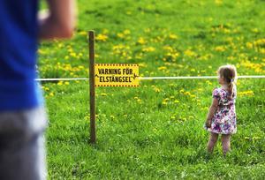 Det lurar många faror på en lantgård.
