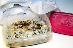 Matlådor kan förvandlas till skräcklådor. Att öppna en kvarglömd låda kan framkalla kalla kårar och rysningar.