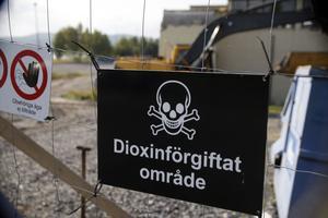 Vissa dioxiner hör till de giftigaste ämnen som människan framställt.