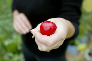 Chili ökar ämnesomsättningen och stimulerar kroppens förmåga att producera endorfiner.