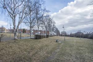 Här, längst ner i Österängsparken, mellan Österängsskolan och Ringvägen, planeras en grupp om tolv Attefallshus att monteras upp.