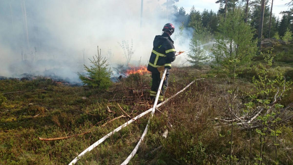 Stal dck frn fretag i Hedesunda dms till villkorlig dom fr