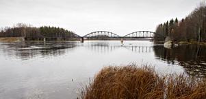 Vattenreglering. Ett projekt på länsstyrelsen Gävleborg ska ge svar på om ändrad vattenreglering och slåtter kan minska antalet mygg.