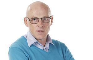 Per Hansson, krönikör