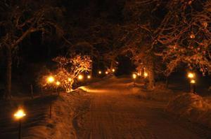 Julnatten 2010 i byn Forsen, en vintertavla jag gärna drar mig till minnes, särskilt om den kanske bli snöfritt i år.