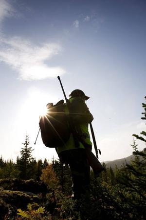 Det växande intresset för jakt syns i tre nya böcker i höst.