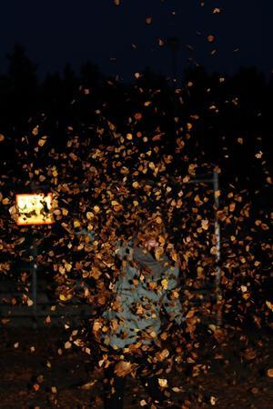 Lövkastning är en av dem bästa sakerna på hösten!