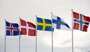Förenade? En nordisk union skulle både bli en maktfaktor och en värdegemenskap.
