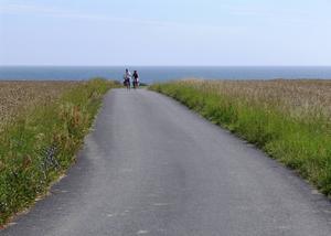 Bildtext 2: Härlig cykelväg på östra Bornholm.   Foto: Anders Pihl