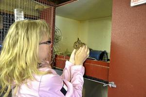 Stölderna har gjort att Maria vill varna andra för kanintjuvar.