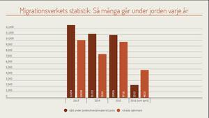 Migrationsverkets statistik avslöjar att flera tusen personer går under jorden i Sverige varje år.