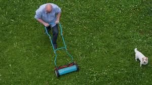 Att klippa gräset i tid och otid kan vara en dålig idé om man vill hålla sig väl med grannarna. En lösspringande hund kan också äventyra grannsämjan.