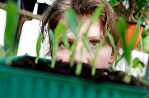 Trenden att skapa en fin trädgård växer sig allt starkare och Marie Gunnarsson i Västerkälen försörjer sig på just det – att med sina gröna fingrar få både privatpersoner och företags växter att blomma.
