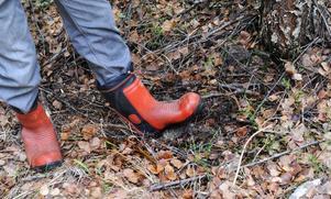 Överallt under finnskogarnas yta finns sot.