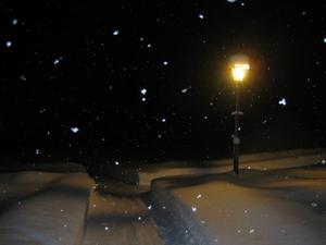 Det snöade kraftig och jag testade kameran med blixt och 4s slutartid. Jag tycker resultatet blev stämningsfullt.