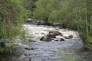 Sörkvarnsforsens naturreservat är ett av de skyddade naturområderna som Hallstahammarborna kan besöka. Foto: Länsstyrelsen