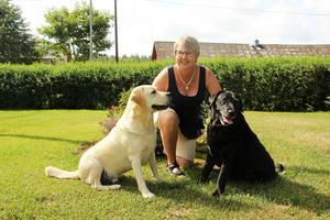 Elisabeth Wallinder med sina labradorer Walle och Buster.