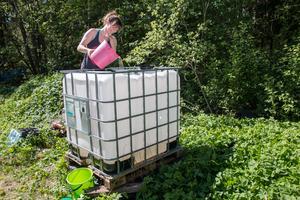 För att långsiktigt kunna samla vatten införskaffade Louise Gustafsson en gammal Ibc-tank som tidigare använts som rapsoljetank. Den planerar hon att fylla med regnvatten allt eftersom vattentunnorna runt huset fylls upp.