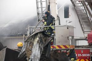 Nära 30 personer var på plats för att bekämpa elden.