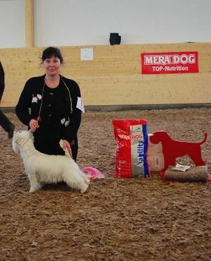 Best in show. BIS valp, West highland white terrier, hane, Match Maxwell, ägare Maria Karp, Borlänge.