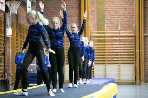 Över 400 gymnaster tränar varje vecka i Borlänge, men det skulle kunna vara 200 till om föreningen fick fler halltider.