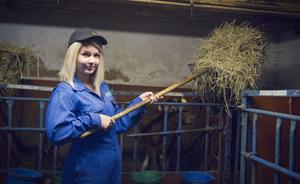 Som avbytare gör man blandade uppgifter i ladugården, bland annat att fylla på hö åt kalvarna.