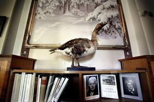 I entrén möter inte bara gåsen Akka utan också en målning av Gustaf Fjaestad.