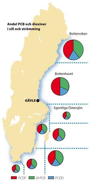 Cirklarnas storlek är proportionell mot den totala koncentrationen av dioxiner och PCB i strömming. Koncentrationen är betydligt högre i Bottenhavet och Bottenviken. Sektorerna visar att andelen PCB är högre i söder medan det finns en relaticvt sett högre andel dioxiner i norr.